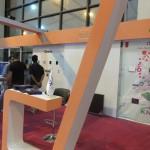 Kerman Exhibition Iran KNX (1)